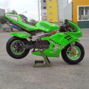 gpstandard-hijau