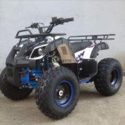 ATV110cc-bg2