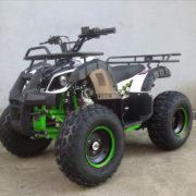 ATV110cc-bg3