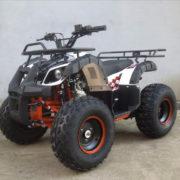 ATV110cc-bg4