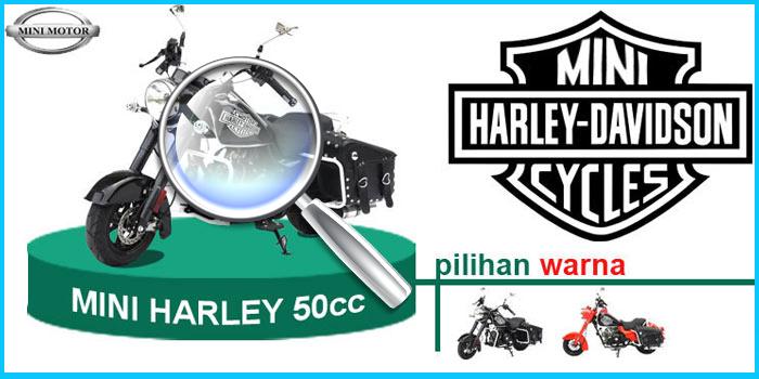 Melihat Lebih Dekat Mini Harley Davidson | Motor Mini