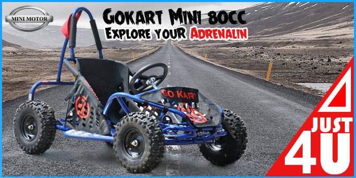 gokart-80cc