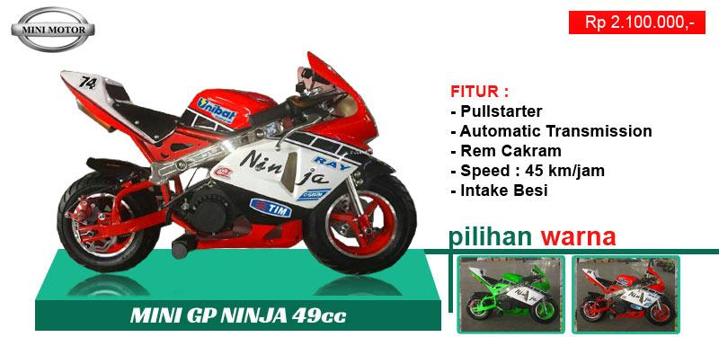 gp-ninja-49cc