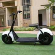 scooter-1000watt