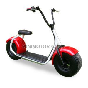 scooter-1000watt-polos