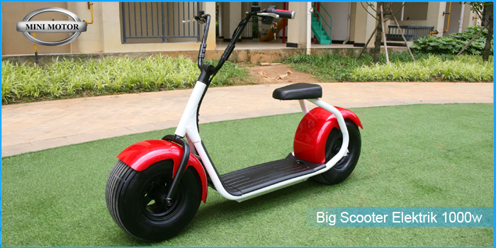 big-scooter-1000w