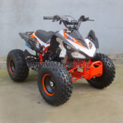 ATV110cc-kc1
