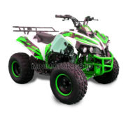 atv110cc-4tak-green