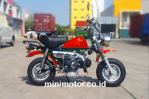 monkey-50cc-2