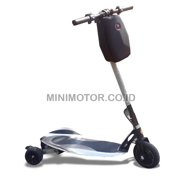 elektrik-skateboard-350wat